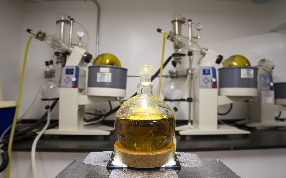 Ethanol-Extraction